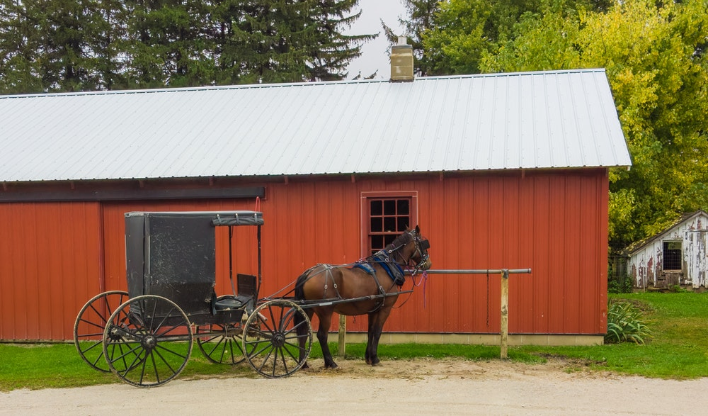 Red Carriage House with Horse and Buggy Outside | Floorguard.com